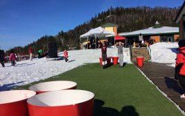 pong-gant-sous-la-neige